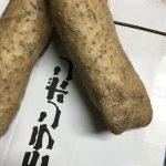 長芋キムチ1